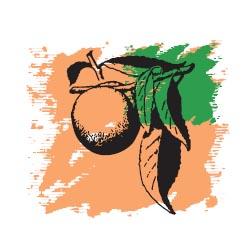 Персиковых семян масло 50 мл