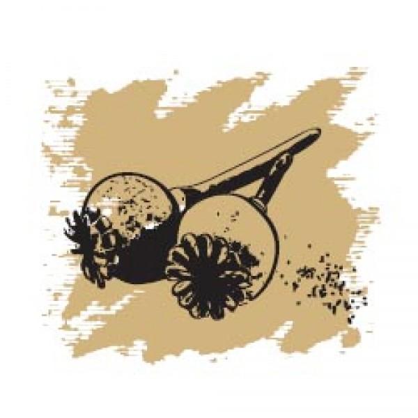 Маковых семян масло 50 мл