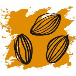 Эфирное масло Моркови 5 мл, органик